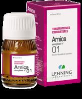 Lehning Arnica Complexe N° 1 Solution Buvable En Gouttes Fl/30ml à Saint-Avold