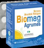Lehning Biomag Comprimés à Croquer Agrumes B/90 à Saint-Avold