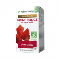 Arkogélules Vigne Rouge Bio Gélules Fl/45 à Saint-Avold