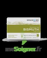 Granions De Bismuth 2 Mg/2 Ml S Buv 10amp/2ml à Saint-Avold