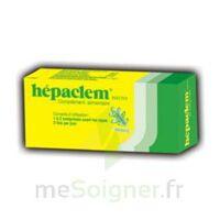 Hepaclem Phyto, Bt 30 à Saint-Avold