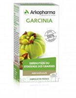 Arkogélules Garcinia Gélules Fl/45 à Saint-Avold