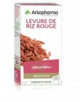 Arkogélules Levure de riz rouge Gélules Fl/45 à Saint-Avold