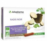 Arkofluide Bio Ultraextract Radis noir Solution buvable 20 Ampoules/10ml à Saint-Avold