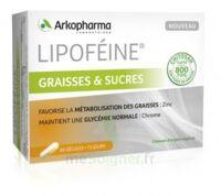 Lipofeine Graisse Et Sucres Gélules B/60 à Saint-Avold