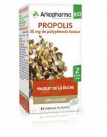 Arkogélules Propolis Bio Gélules Fl/45 à Saint-Avold