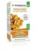 Arkogélules Fenugrec Bio Gélules Fl/40 à Saint-Avold