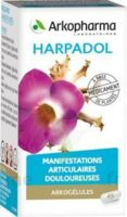 ARKOGELULES HARPAGOPHYTON, 150 gélules à Saint-Avold