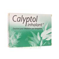 CALYPTOL INHALANT, émulsion pour inhalation par fumigation à Saint-Avold