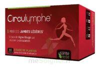 Santé Verte Circulymphe Triple Actions B/60 à Saint-Avold