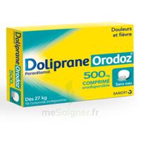 Dolipraneorodoz 500 Mg, Comprimé Orodispersible à Saint-Avold