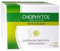 Chophytol Cpr Enr 6plaq/30 à Saint-Avold
