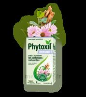 Phytoxil Immunité Gélules B/40 à Saint-Avold