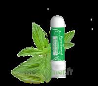 Puressentiel Respiratoire Inhaleur Respiratoire aux 19 Huiles Essentielles - 1 ml à Saint-Avold