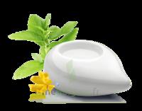 PURESSENTIEL DIFFUSION Diffuseur à chaleur douce céramique blanc à Saint-Avold