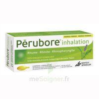 PERUBORE Caps inhalation par vapeur inhalation Plq/15 à Saint-Avold