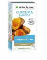 Arkogelules Curcuma Pipérine Gélules Fl/45