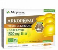 Arkoroyal Gelée royale bio 1500 mg Solution buvable 20 Ampoules/10ml à Saint-Avold