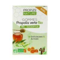 Propos'nature Gomme De Propolis Miel/eucalyptus B/24 à Saint-Avold