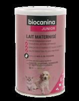 Biocanina Lait Poudre Maternisé B/400g à Saint-Avold