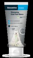Biocanina Shampooing éclat Poils Blancs 200ml à Saint-Avold