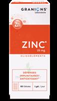 Granions Zinc 15mg Gélules B/60 à Saint-Avold