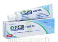 Gum Hydral Gel, Tube 75 Ml à Saint-Avold