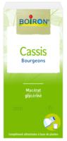 Boiron Cassis Bourgeons Extrait Glycériné Fl/60ml à Saint-Avold
