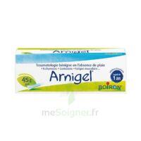 Boiron Arnigel Gel T(alumino-plastique)/45g à Saint-Avold