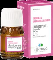 Lehning Complexe Juniperus N° 6 Solution Buvable Fl/30ml à Saint-Avold