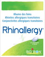 Boiron Rhinallergy Comprimés B/40 à Saint-Avold