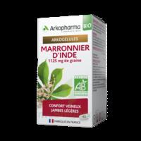 Arkogélules Marronnier D'inde Bio Gélules Fl/45 à Saint-Avold