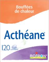 Boiron Acthéane Comprimés B/120 à Saint-Avold